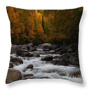 Fall River Throw Pillow