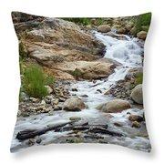 Fall River Falls Throw Pillow