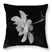 Fall Rose Throw Pillow