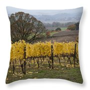 Fall Scenic Throw Pillow