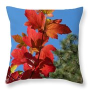 Fall Snowball Branch Throw Pillow