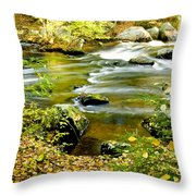 Fall Squared Throw Pillow