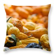 Fall Squash Variety Throw Pillow