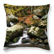 Fall Stream Throw Pillow