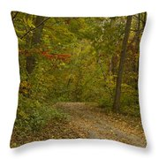 Fall Trail Scene 22 Throw Pillow