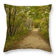 Fall Trail Scene 23 Throw Pillow