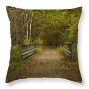 Fall Trail Scene 24 Throw Pillow