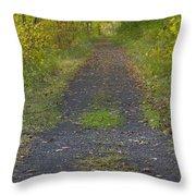 Fall Trail Scene 30  Throw Pillow
