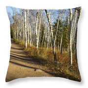 Fall Trail Scene 35 A Throw Pillow