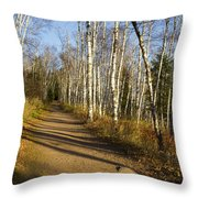 Fall Trail Scene 35 B Throw Pillow