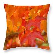 Fall Tree Leaves Art Prints Orange Red Autumn Throw Pillow