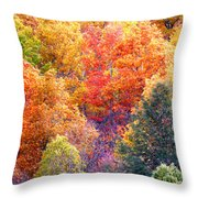 Fall Trees 3 Throw Pillow