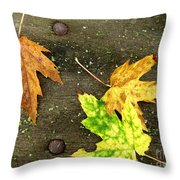 Fall Trio Throw Pillow