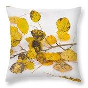 Fallen Autumn Aspen Leaves Throw Pillow