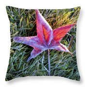 Fallen Autumn Leaf In The Grass During Morning Frost Throw Pillow
