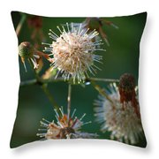 Fallen Flowers Throw Pillow