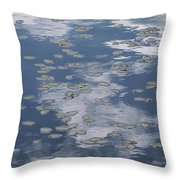 Fallen Leaves And Reflections Of Clouds Throw Pillow