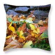 Fallen Leaves  Throw Pillow