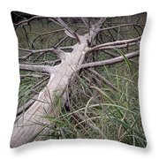 Fallen Pine Tree Throw Pillow