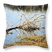 Fallen Tree Throw Pillow by Douglas Barnard