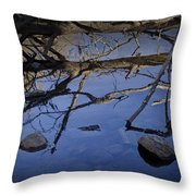 Fallen Tree Trunk With Reflections On The Muskegon Rive Throw Pillow