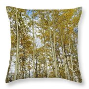 Falling For The Birch And Aspens Throw Pillow