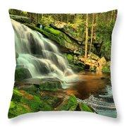 Falling Through The Woods Throw Pillow