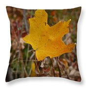 Falling To Earth Throw Pillow