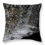 Fall's Backside Throw Pillow