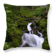 Falls Creek IIi Throw Pillow