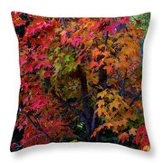 Falls Fiery Rainbow Throw Pillow