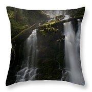 Falls Golden Light Throw Pillow