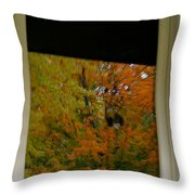 Fall's Reflective Moment Throw Pillow
