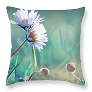 Family Of Daisy  Throw Pillow