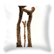 Family Throw Pillow by Adam Long