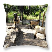 Family At Landscape Creations  Throw Pillow