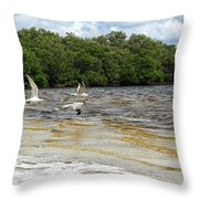 Family Flight On The Final Winds Of Issac  Throw Pillow