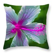 Fanciful Hibiscus Throw Pillow