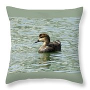 Fancy Duck At The Lake Throw Pillow
