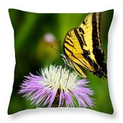 Fancy Free Throw Pillow