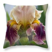 Fancy Iris Dance Ruffles Throw Pillow