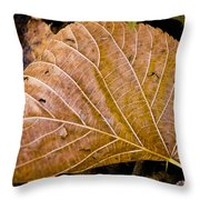 Fanleaf Throw Pillow