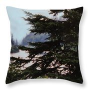 Far From Today Throw Pillow