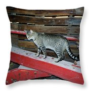 Farm Cat Throw Pillow