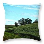 Farm Fields Throw Pillow
