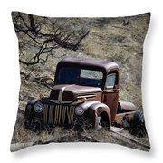 Farm Fresh Ford Throw Pillow