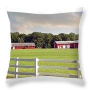 Farm Pasture Throw Pillow