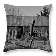 Farmers Building Throw Pillow