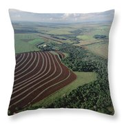 Farming Region With Forest Remnants Throw Pillow