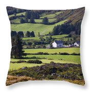 Farmland Near Kilgarvan County Kerry Throw Pillow